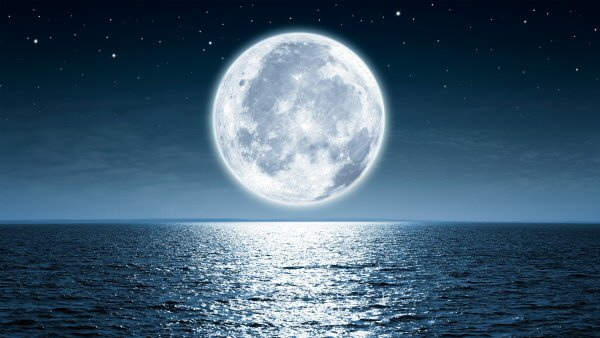 moon phase,guide,